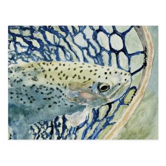 Diseños de la pesca de la captura y del lanzamient tarjetas postales