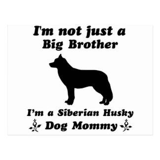 diseños del perro del husky siberiano postales