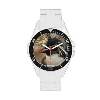 Diseños del pingüino reloj