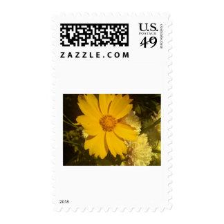 Diseños florales 002 sellos