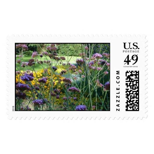 Diseños florales - sellos