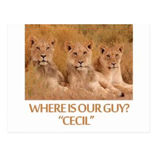 diseños frescos de los leones postales