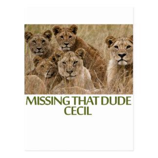 diseños frescos de los leones tarjeta postal