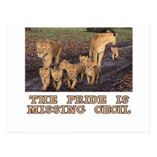 diseños frescos de los leones tarjetas postales