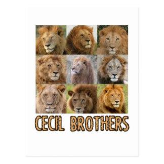 diseños frescos del león postales