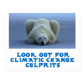 diseños frescos del oso polar postal