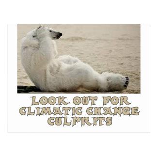 diseños frescos del oso polar tarjeta postal