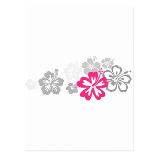 Diseños grises y rosados del hibisco tarjetas postales