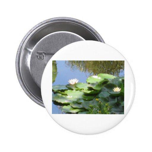 Diseños sostenibles pin