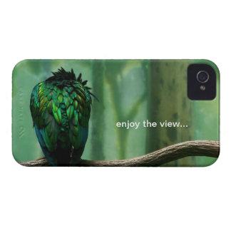 disfrute de la visión… iPhone 4 cobertura