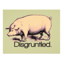 Disgruntled Pig Flyer