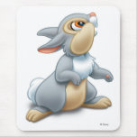 Disney Bambi Thumper sitting Mouse Pads