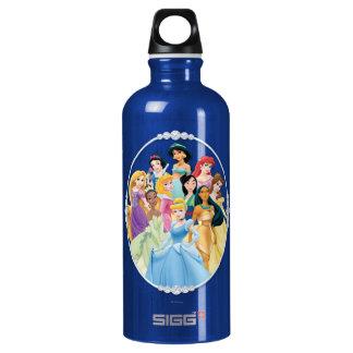 Disney Princess | Cinderella Featured Center Aluminum Water Bottle