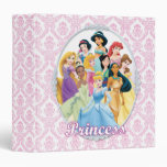 Disney Princesses 11 Vinyl Binders