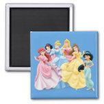 Disney Princesses 7 2 Inch Square Magnet