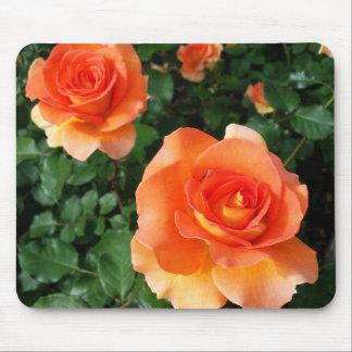Disneyland Roses Mouse Pad