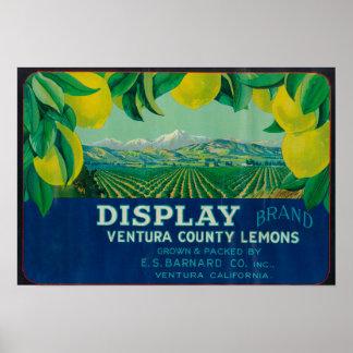 Display Lemon LabelVentura, CA Print