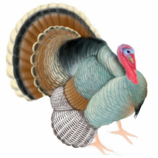 Displaying Tom Turkey Ornament Photo Cut Out
