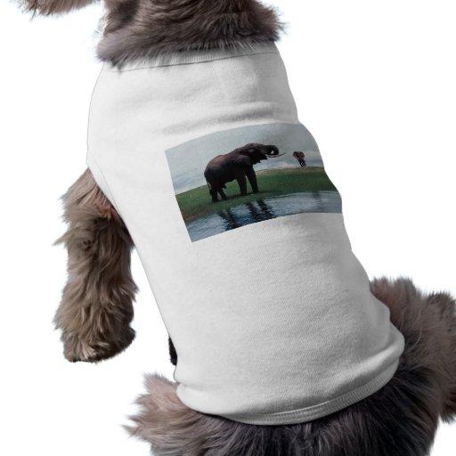 Distant Elephants Dog Tee