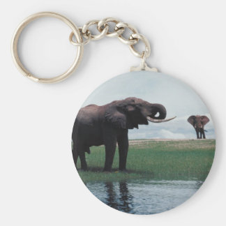 Distant Elephants Keychain