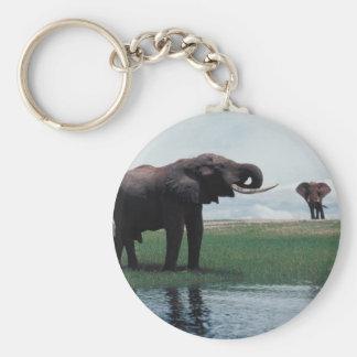 Distant Elephants Keychain