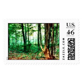 Distant Mist Stamps