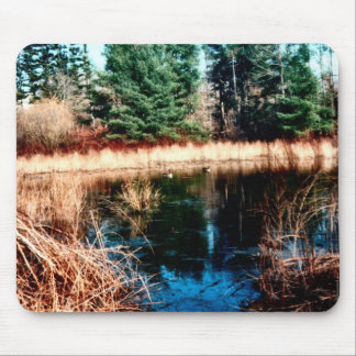 Distant Swimmers Mouse Pad