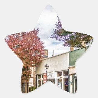 distr históricos de la ciudad del rosa blanco de pegatina en forma de estrella