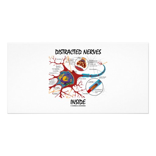 Distracted Nerves Inside (Synapse) Custom Photo Card