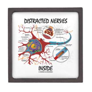 Distracted Nerves Inside (Synapse) Premium Trinket Boxes