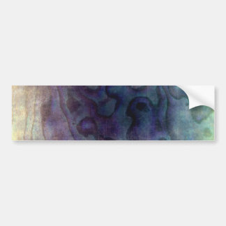 Distressed Abalone Bumper Stickers