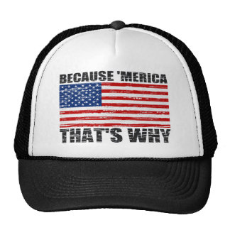 Distressed BECAUSE 'MERICA THAT'S WHY US FLAG Hat Trucker Hat