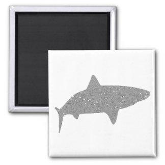 Distressed Grey Tiger Shark 2 Inch Square Magnet