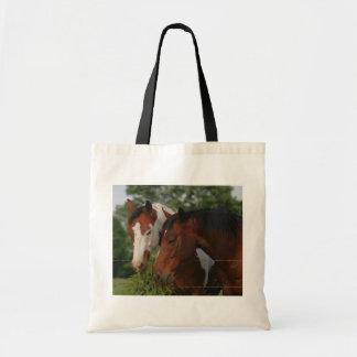 Distribución de dos caballos bolsas