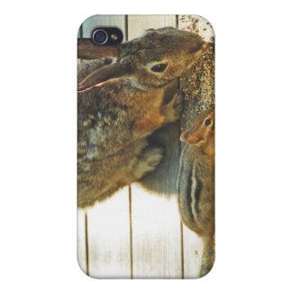 Distribución del conejito y del Chipmunk iPhone 4 Coberturas