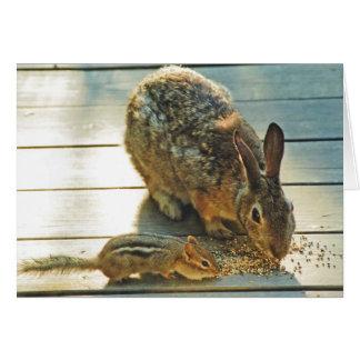 Distribución del conejito y del Chipmunk Tarjeton