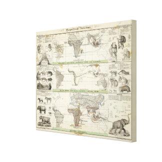 Distribución geográfica impresión de lienzo