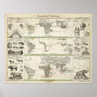 Distribución geográfica póster