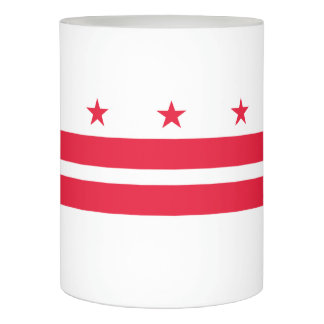 District of Columbia Flameless Candle