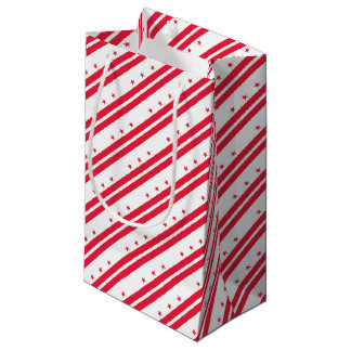 District of Columbia Small Gift Bag