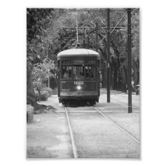 Distrito New Orleans, LA del jardín del teleférico Póster