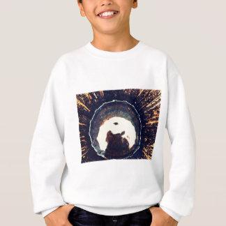 Disturbed waters sweatshirt