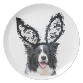 Ditay Dogs~Original Plate~Border Collie~Easter Melamine Plate