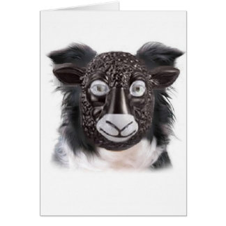 Ditzy Dogs~Border Collie Greeting Card~Sheep
