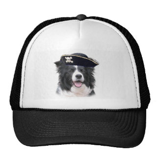 Ditzy Dogs~Border Collie Hat~Halloween