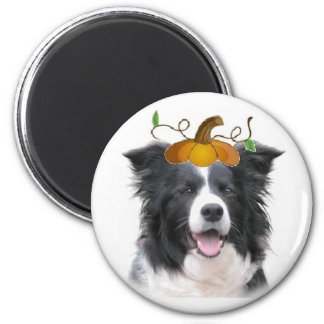 Ditzy Dogs~Border Collie Magnet~Halloween 2 Inch Round Magnet