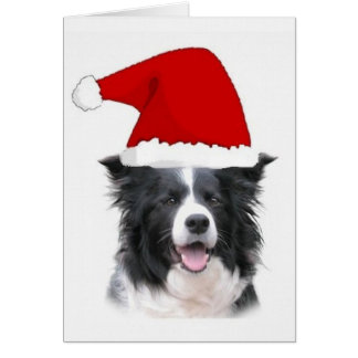 Ditzy Dogs~Border Collie Notecard~Christmas Card
