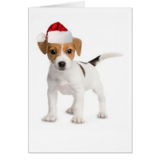 Ditzy Dogs~Original Greeting Card~Jack Russell