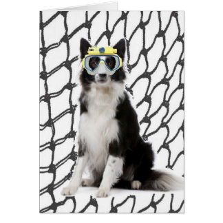 Ditzy Dogs~Original Notecard~Border Collie Greeting Card