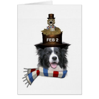 Ditzy Dogs~Original Notecard~Border Collie Greeting Cards
